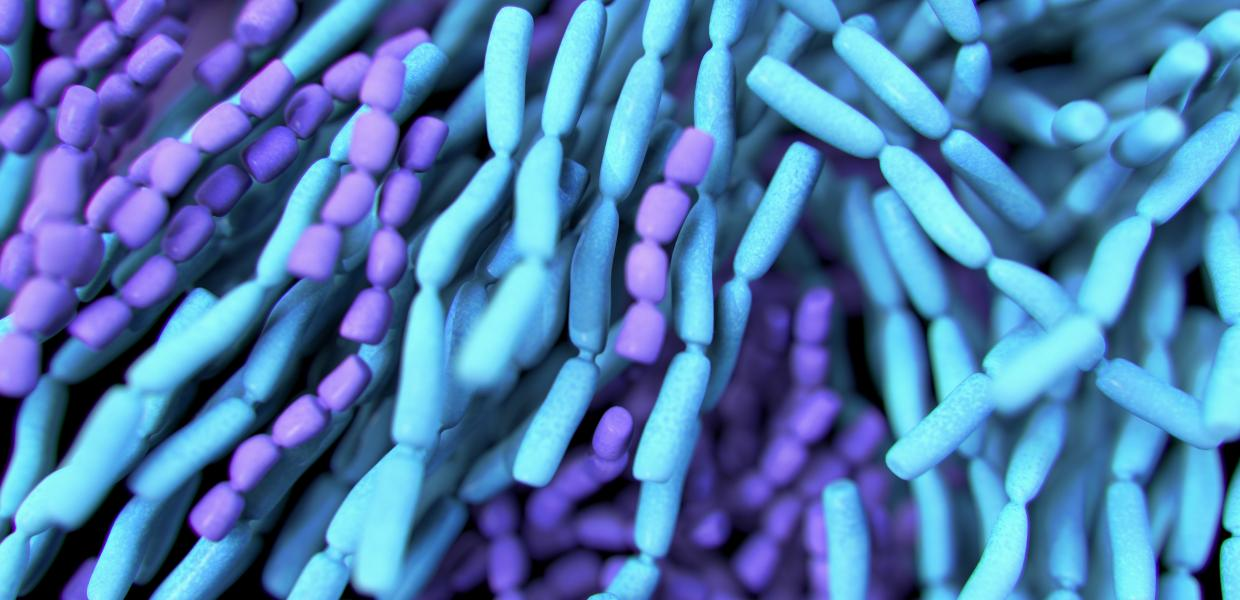 Guidance On Probiotics >> Best Practices Guidelines For Probiotics Council For Responsible
