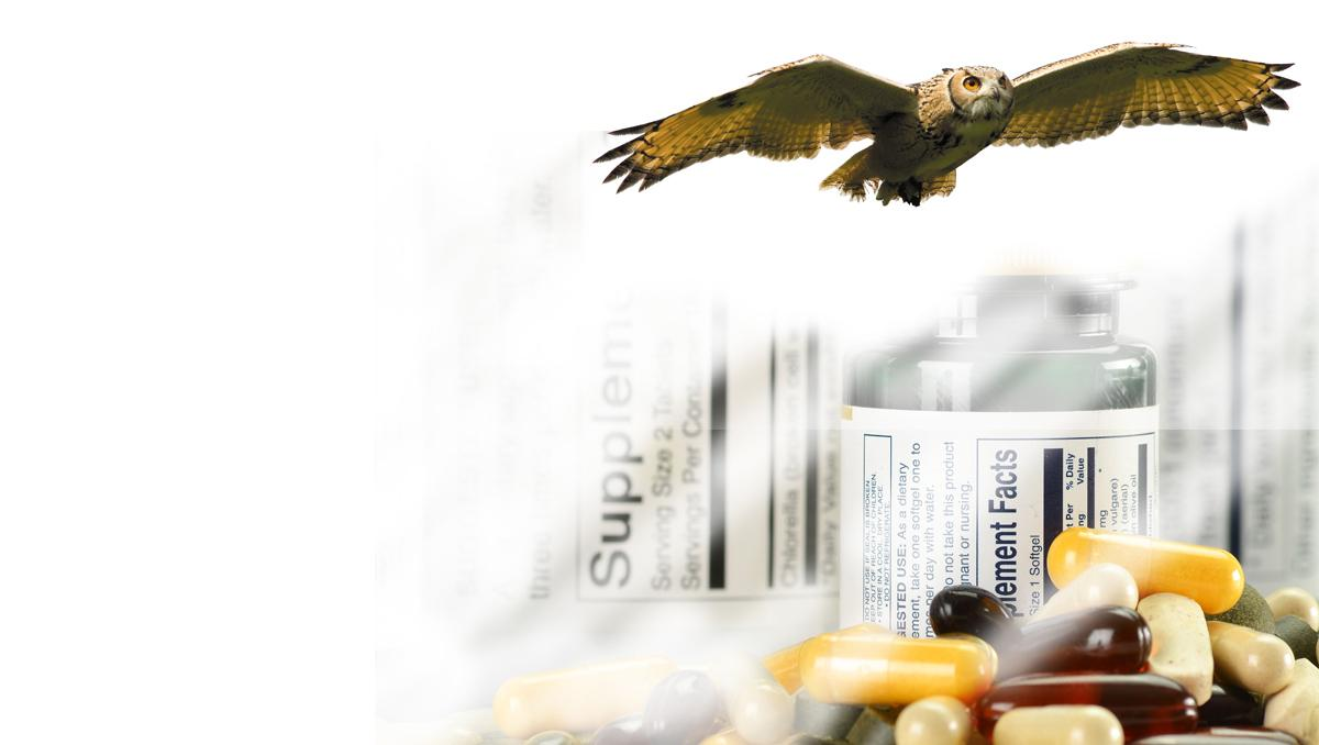 The Supplement OWL